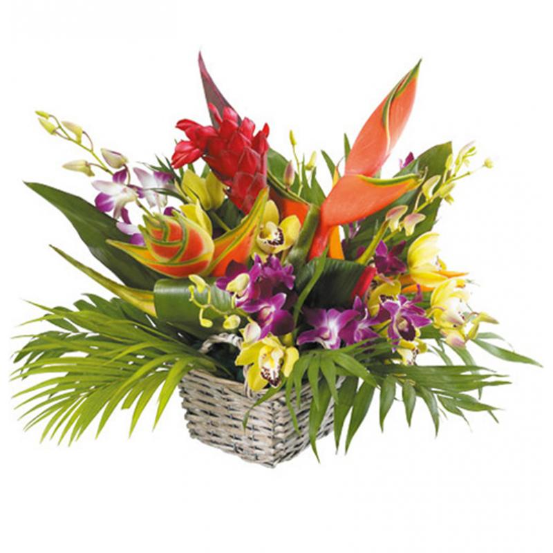 Panier de fleurs de seychelles composition fleurs for Bouquet de fleurs guadeloupe