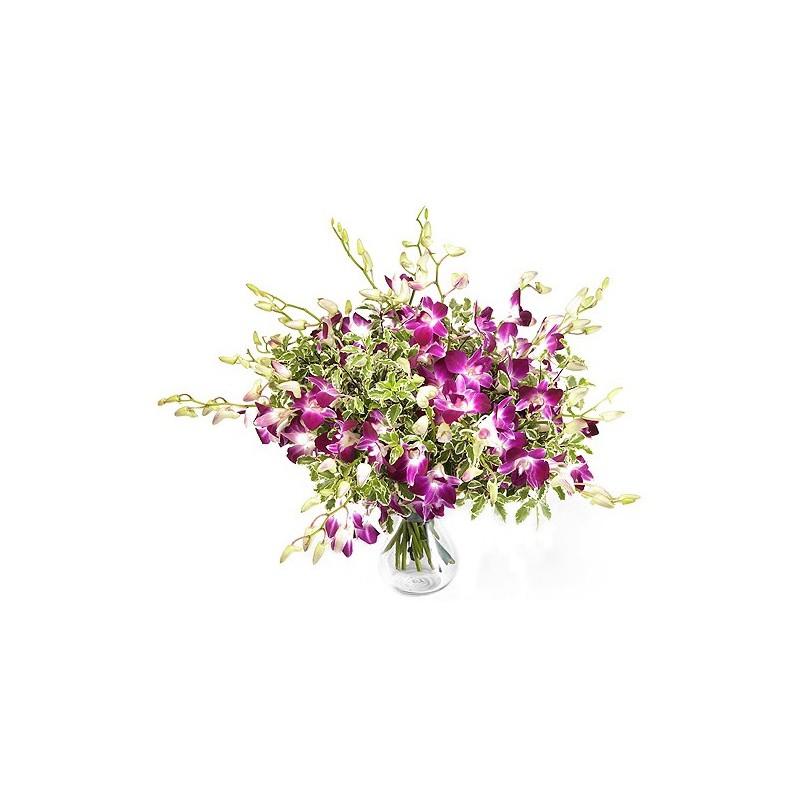 Bouquet de fleurs mono dendrobium fleurs exotiques for Bouquet de fleurs 30 euros