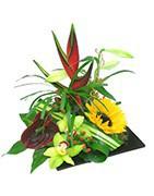 Compositions florales exotiques | Achat en ligne | Fleurs Exotiques