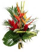 Bouquets de fleurs exotiques | Achat en ligne | Fleurs Exotiques